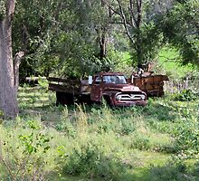 Abandoned Farm Truck by dalemark
