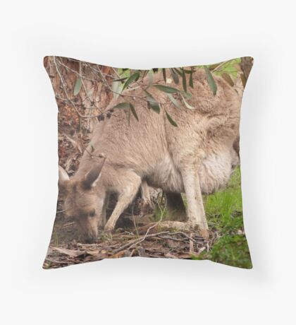 Floe comes down to the Mallee tree. Throw Pillow
