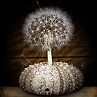 the dandelion tree by © Karin (Cassidy) Taylor