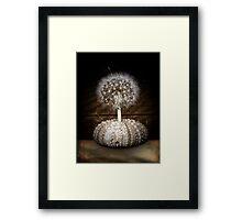 the dandelion tree Framed Print