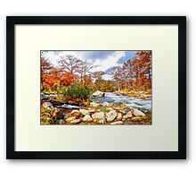 Along The River In Fall Framed Print