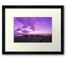 beach and the cows Framed Print