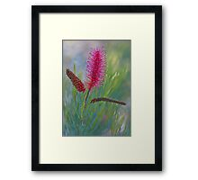 Every Flower Was Once a Seed Framed Print