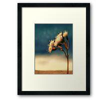 sundrenched Framed Print