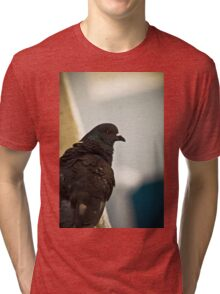 Bird's Eye 2 (the thinker) Tri-blend T-Shirt
