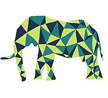 Pixelated Elephant Photographic Print