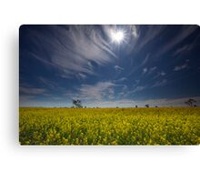Under the Outback Sun Canvas Print