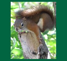 Nervous red squirrel Unisex T-Shirt