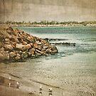 seashore by © Karin Taylor