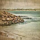 seashore by © Karin (Cassidy) Taylor