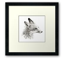 A Young Fox Framed Print