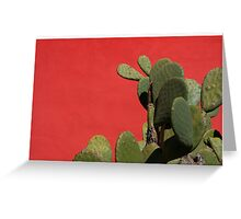 Historic District in Tucson, Arizona Greeting Card