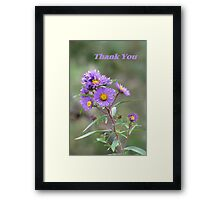 Thank you series: purple asters Framed Print