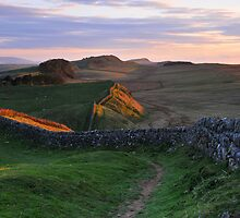 Hadrian's Wall from Kings Hill by Joan Thirlaway