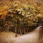 Autumn Crossing by Jessica Jenney