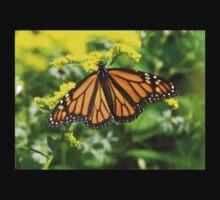 Monarch butterfly Baby Tee