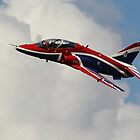 The Hawk T1 at Wings and Wheels by Shane Ransom