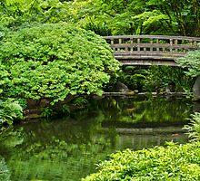 Bridge Over Flowing Waters by Don Schwartz
