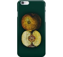 newton's infinite fruit of cosmic indolence iPhone Case/Skin