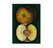newton's infinite fruit of cosmic indolence Art Print