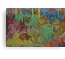 Painting Through Glass 1 Canvas Print