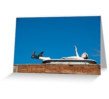 Man in tub - Winslow, Arizona Greeting Card