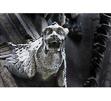 gargoyle, Notre Dame, Paris Photographic Print