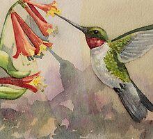 Hummingbird by Andrea Gabriel