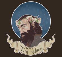 Scale The Wall by Shadyfolk