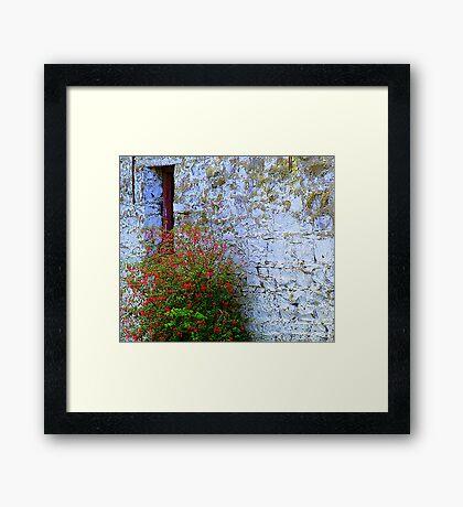 Stone Barn With Fuschia Framed Print
