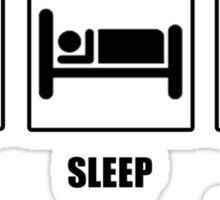 Eat Sleep Play Qudditch Sticker
