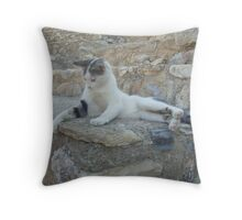 Cat playing with blade of grass Throw Pillow