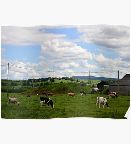 Little farm Poster