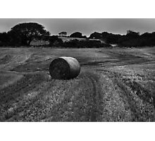 Golden Wheaty Roll... Photographic Print