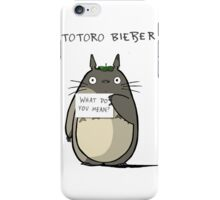 Totoro Catbus What Do You Mean iPhone Case/Skin