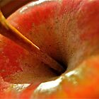 Apple by Ariel Faraci
