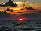 Sunset in Florida by Irina777
