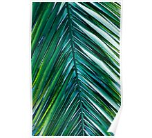Palm Monday Poster