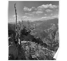 Grand Canyon of the Tuolumne - Yosemite N.P. Poster