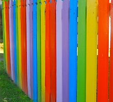The Fence of Rainbows by Penny Smith