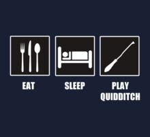 Eat Sleep Play Qudditch by tappers24