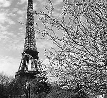 BW France Paris Eiffel tour 1970s by blackwhitephoto