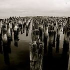 Perception On The Old Wharf  by David Toolan