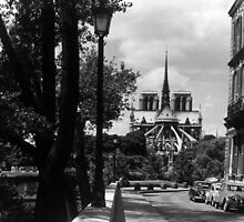 BW France Paris notre dame saint louis island 1970s by blackwhitephoto