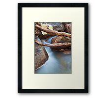 Brush Creek Detail Framed Print
