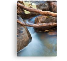 Brush Creek Detail Canvas Print