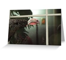 Peeping Tom Greeting Card