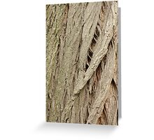 Cedar Bark Greeting Card