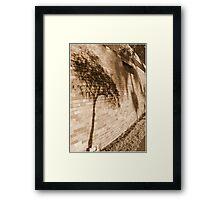 El Shadow Boughs Framed Print