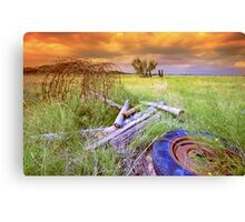 Stormy Day`s Canvas Print